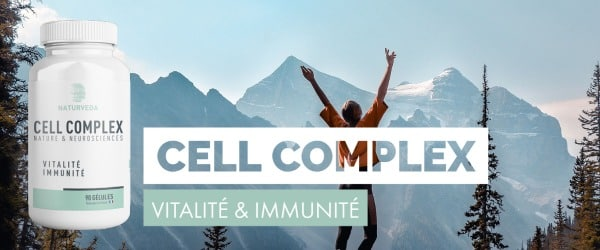 Bouton Cell complex